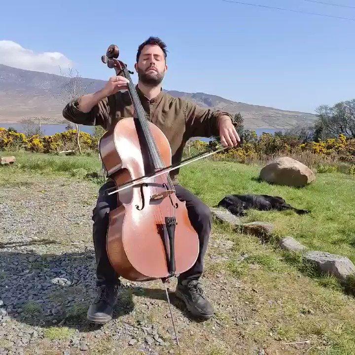 Sarabande from Bach Cello Suite No. 1 in G major #cello #bach #classicalmusic #ireland