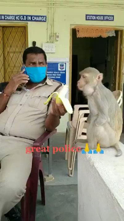 Police Officer feeding an amputee Monkey.
