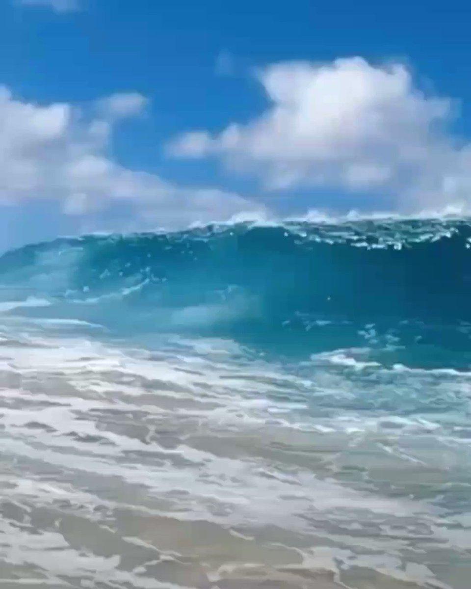 Amo essa vibe galera  #praia #Nordeste #marpic.twitter.com/ddLQggwyDR