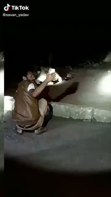 For example this person on #TikTok. Taking selfie with lion. Later arrested.