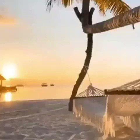 Fiquei imaginando está rede balançando o Turistão. Rsrs. Quem gostaria de fazer o mesmo? SE CURTIU ESTE POST, VAI NO PERFIL E NOS SEGUE - @turistao #relaxar #rede #relax #paz #praia #solpic.twitter.com/04ikFP6hdJ
