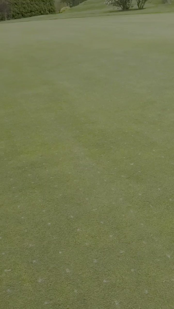 Image for the Tweet beginning: 2 hours post #DryJect, brush