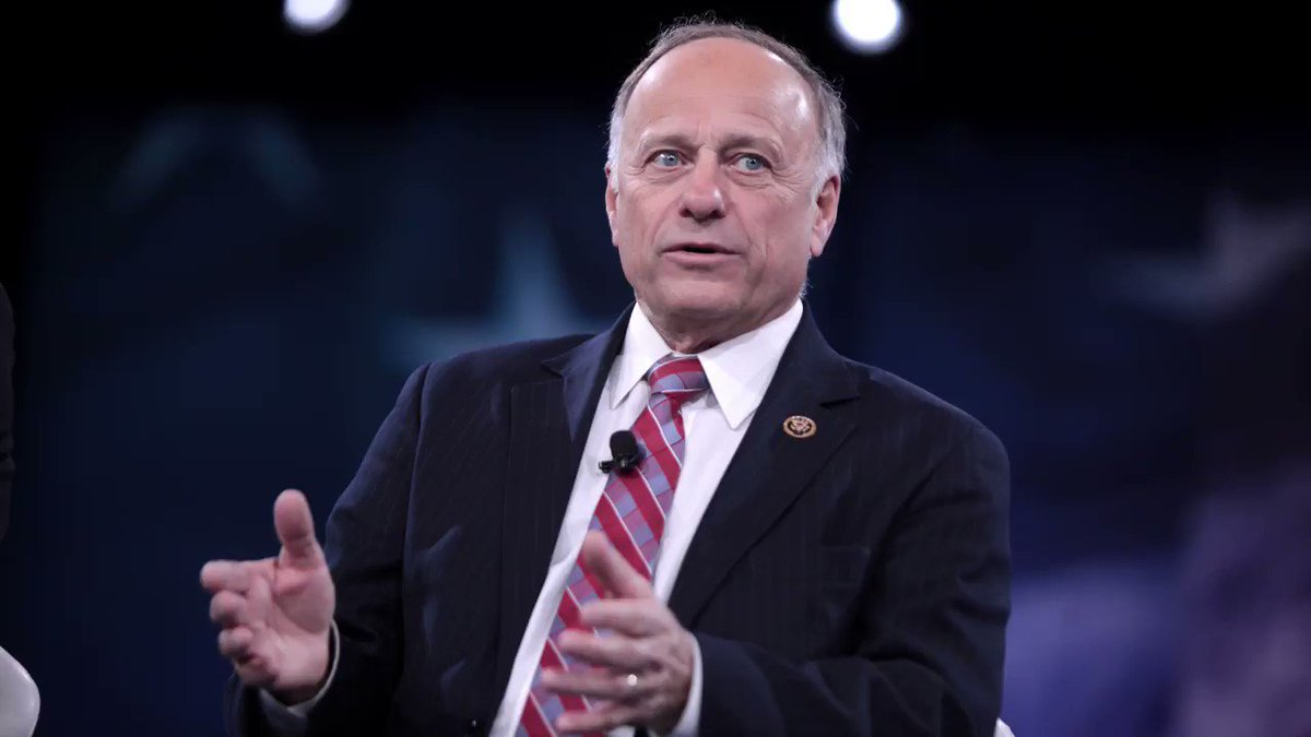 Where will it end with @SteveKingIA? He voted not to crack down on dog fighting ❌ He voted no on dozens of bipartisan bills to protect animals ❌ Steve King doesn't represent Iowa values. #IA04