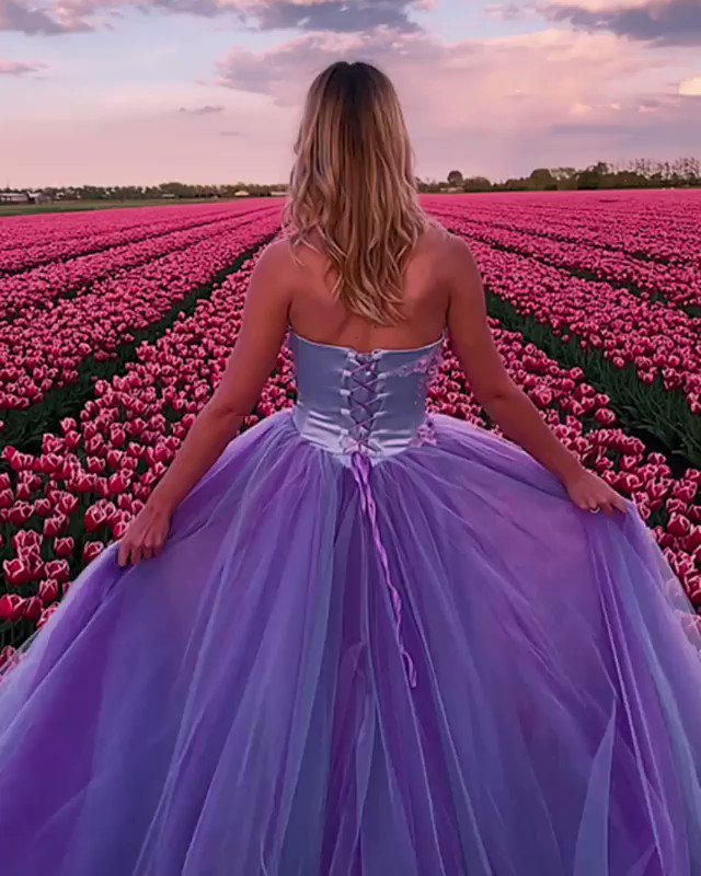 Hi my Precious friends. I wish you a happy time. Take care and stay safe. Hugs and smiles. #amsterdam #netherlands  #hoorn #tulipfields asyen_k       #ℒℴѵℯJαšᄊİηє♡opic.twitter.com/DaQXw54C9x