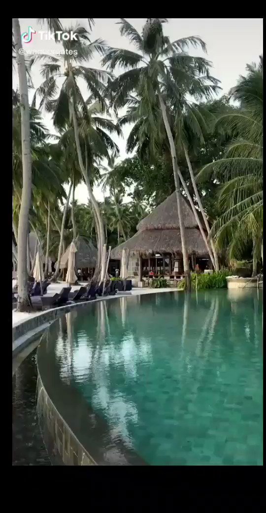 REAL LOVE MOVES FREELY IN BOTH DIRECTIONS. DON'T WASTE YOUR TIME ON ANYTHING ELSE. @wandergates #TikTok #tiktoktravel #maldives #tiktokmaldives #foryou #viral #fyp #beach #relax #travel #paradise #ocean #aerial #foryoupage  Have a marvellous weekend dear friends. pic.twitter.com/a1w47Wz2cv