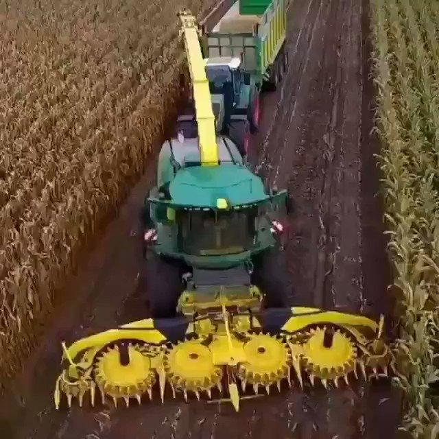 @BlessedMonk_ @narendramodi Hi-tech agriculture.. https://t.co/ldA83Eb8xL