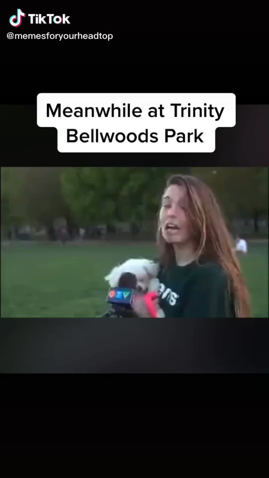 Trinity Bellwoods Photo