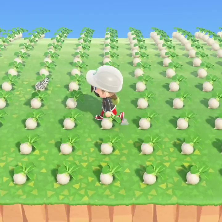 Turnips are the new flex → http://youtu.be/e7v3IIR-oPw @AustinJohnPlayspic.twitter.com/i4bqv94gQG
