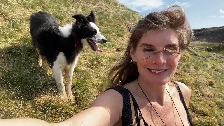 To pastures new.   #hillshepherdess #shepherdess #work #yorkshire #sheepdog #sheep #views pic.twitter.com/x0UlUld1yd