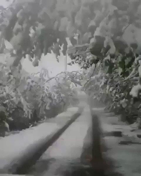 Yaylalar Karlandı - Trabzon . . . #lovelytrabzon #karyağışı #MayıstaKar #kar #kış #doğa #doğal #natural #snow #winter #trabzon #karadeniz #blacksea #türkiye #turkey . #طبيعة #طرابزون #تركي