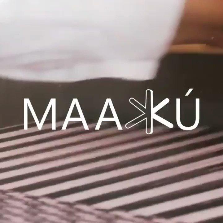 En MAAXKÚ confeccionan zapatos hechos en telares oaxaqueños. Ahora hacen cubrebocas para apoyar a los artesanos. Si tienes una PYME mándanos tu video de 1 minuto a #ElBuenVirus que nosotros lo subiremos gratis a nuestras redes. #NoNosDetieneElVirus https://t.co/9ORWDWCCMF https://t.co/QuFEL750o1