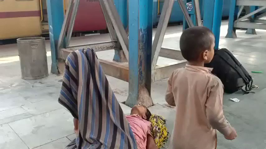 A toddler in Bihar's Muzaffarpur tries to wake his mother at the railway station . He does not know she is dead , reportedly from the heat , hunger and exhaustion of the train journey from Gujarat . This should shame us all !