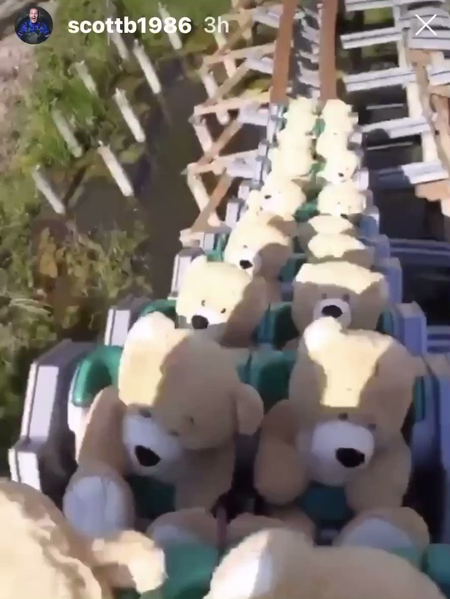 A full train of Teddy's take a ride and enjoy some airtime at Walibi Holland. #untamed #holland pic.twitter.com/QPuUxViezg