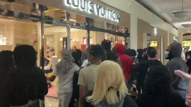 Looting Louis Vuitton store in Portland. Nothing screams justice like designer handbags.