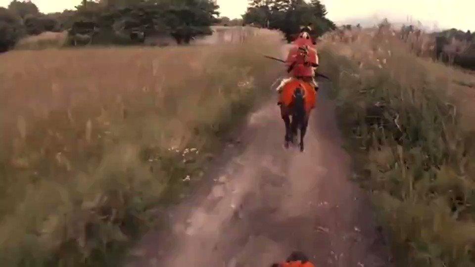 かっけえ!日本馬のパワーってスゲぇ! 古来の騎馬武者の動きを再現した動画が無類のカッコ良さ  @itm_nlab