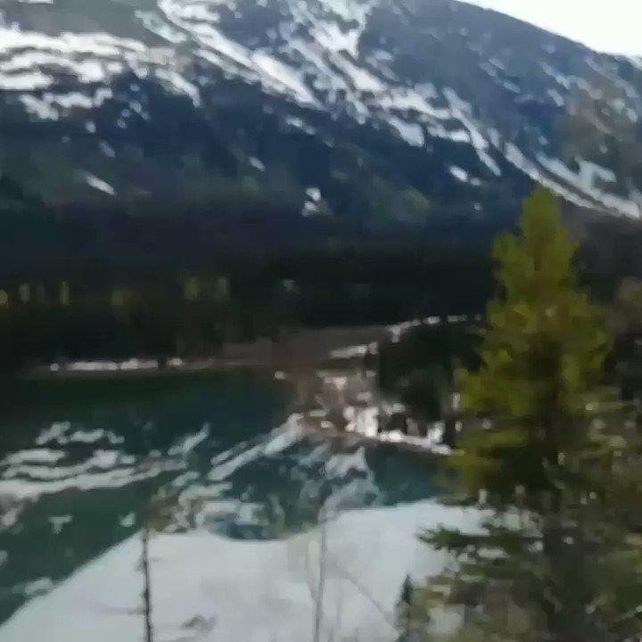 #iwillwander #BritishColumbia lake pic.twitter.com/BDbdQPE5Wp