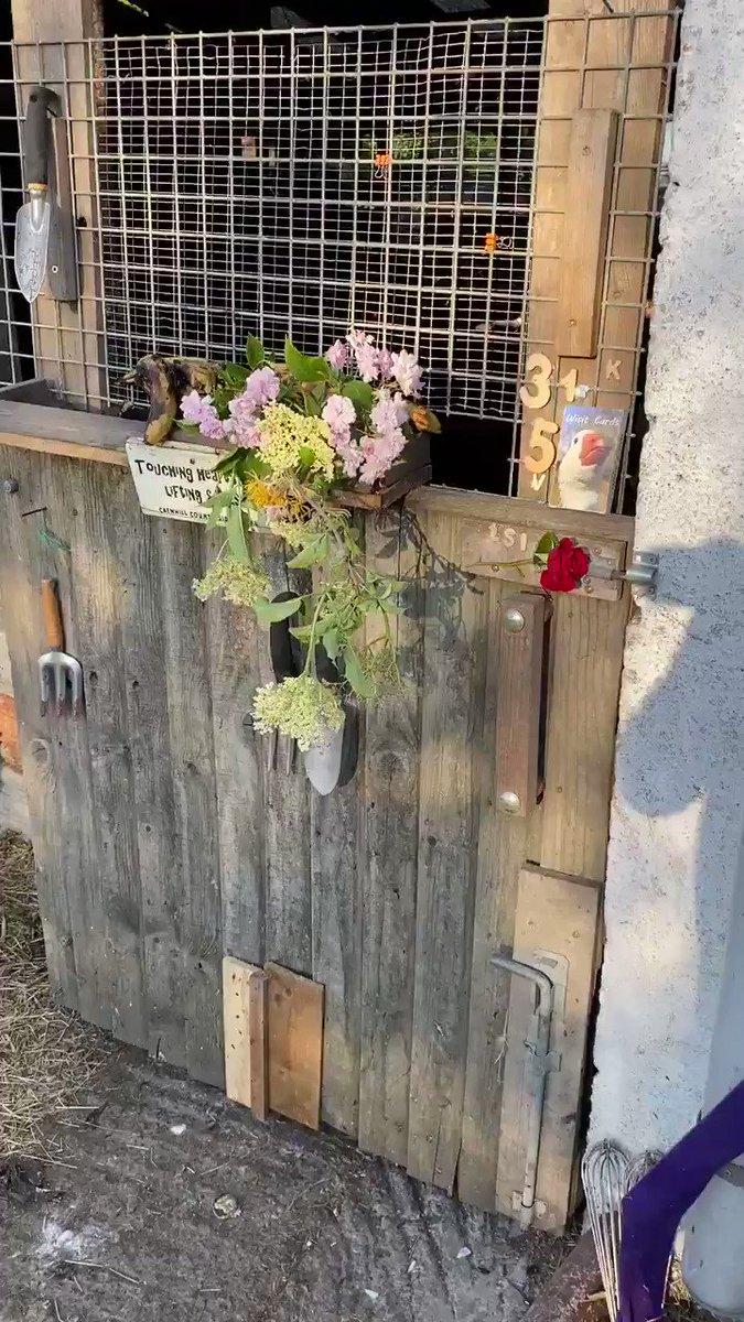Greetings and good morning it's Sunday rush hour #rushhour #farmrushhour #gigglethegoose @caro_painterpic.twitter.com/FqgIw3KjJ8