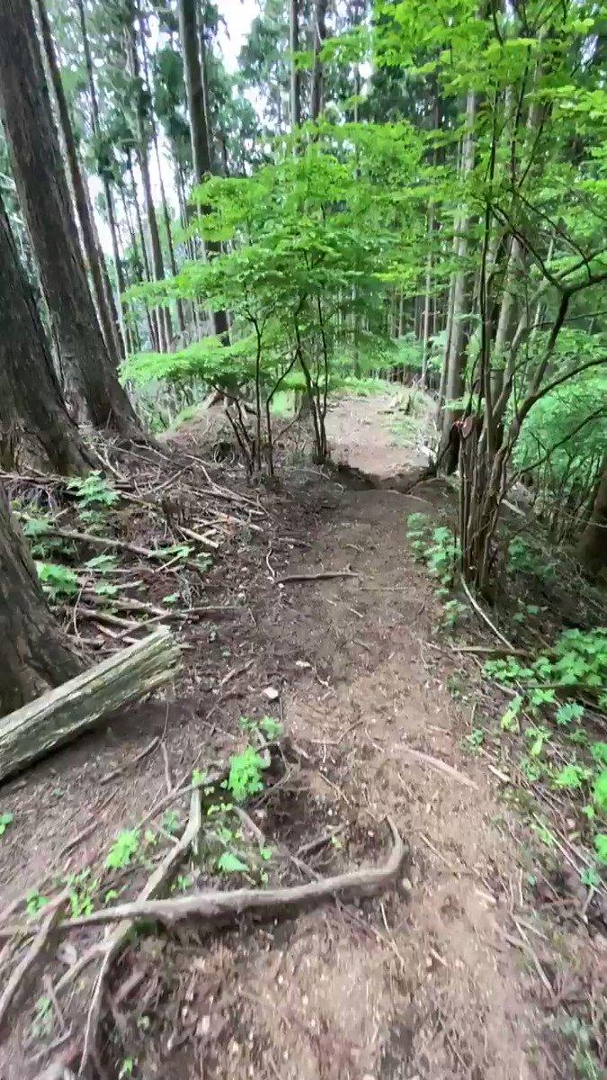 登山の予定があるなら観ておきたい・・・!山道を見失ってしまう理由が分かる動画!