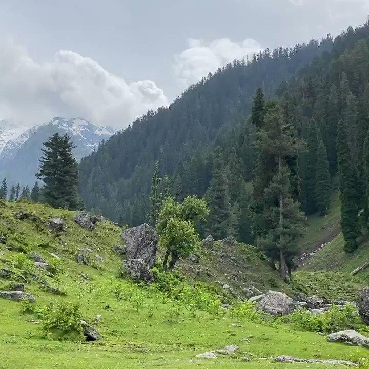 Nature at its best. Mesmerizing beauty. #aruvalley #southkashmir #nature #Kashmir #heavenonearth #himalayas https://t.co/qLoEZJ5EBs