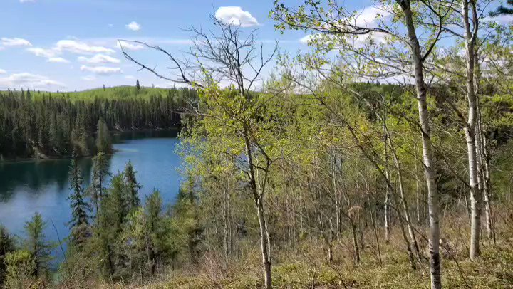This gorgeous area! Wow!   #explore #adventure #hiking #outdoors #outdoorswoman #nature #naturelover #woods #forest #canada #borealforest #lake #lakecountrypic.twitter.com/0GsbEjMn2b