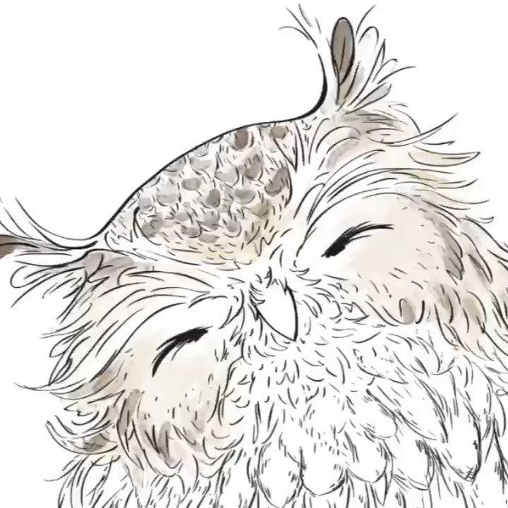 Time lapse owl   #Artist pic.twitter.com/opjXJZmSl9