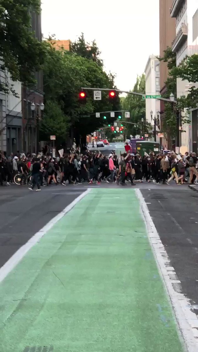 I just left the protest at Pioneer Square in Portland, there were close to a thousand people there at the time. And then while I was walking home, I looked to my east and saw this seemingly endless river of people walking toward where I had just left...