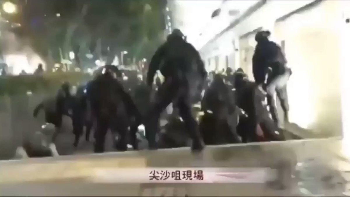 Replay: Hong Kong police beat up on the unarmed protesters who are fighting for freedom and democracy, but how many police officers have been punished for their brutality? NONE! #StandWithHongKong #PeopleLivesMatter  #HKPoliceBruality  Video credit: #RTHK