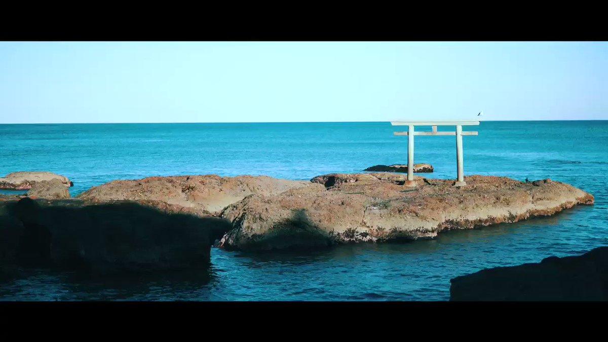 おうちでyoutuber風動画を目指してたら@iammoyachan にいじられたstayhome期間を乗り越え(?)夫婦おでかけVLOGを再開☺️💐外出自粛前、スイレンが咲いてる時期にひたち海浜公園・大洗に行きました。来年はネモフィラの季節に青色の絨毯を見に行きたい...!#週末デートVLOG ⏩
