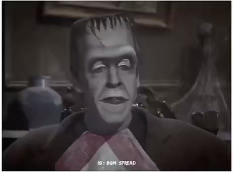 @RexChapman's photo on Herman Munster