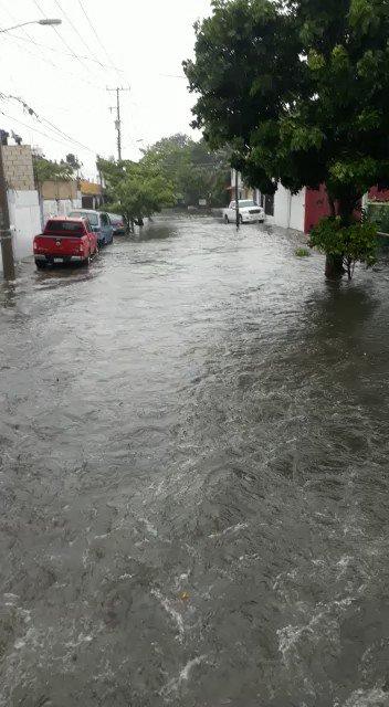 Ciudad del Carmen Campeche, inundada por TT Cristobal @AristeguiOnline @DoliaEstevez @jenarovillamil @julioastillero @lajornadaonline @contralinea @diariodelistmo_ @JPBiosca