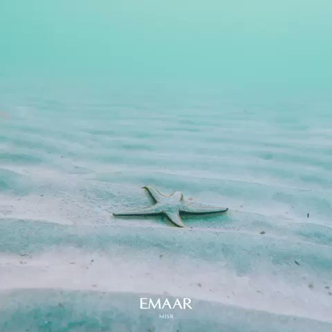 Let's reconnect with nature and celebrate the World Environment Day together! It's time to protect our environment. #Emaar https://t.co/D7zx2npTwE