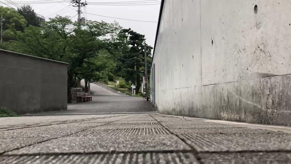 『ダッシュ!😸run quickly 』(2020/ 6/ 6朝) 🎨何かを感じとりエントランスへ。#尾道 #千光寺公園 #尾道市立美術館 #黒猫 #cat