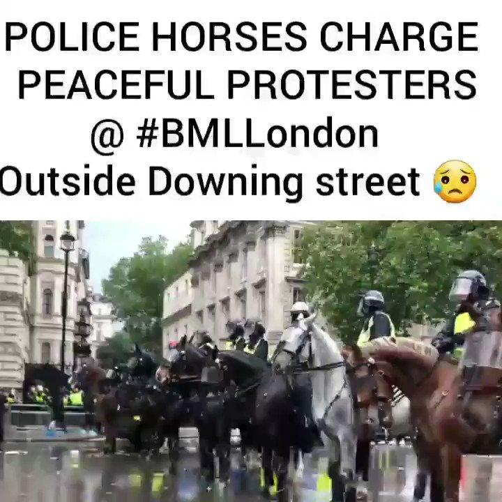 Police horses charge peaceful protesters @ #BLMLondon Outside Downing street! 😥 #ThisIsOnYouJohnson 🤨 #blacklivesmatter #BLM #blacklivesmatteruk✊🏼✊🏽✊🏾✊🏿 #ukprotests #londonprotests @ukblm @AntiRacismDay @AyoCaesar @MayaGoodfellow @OwenJones84 @AaronBastani