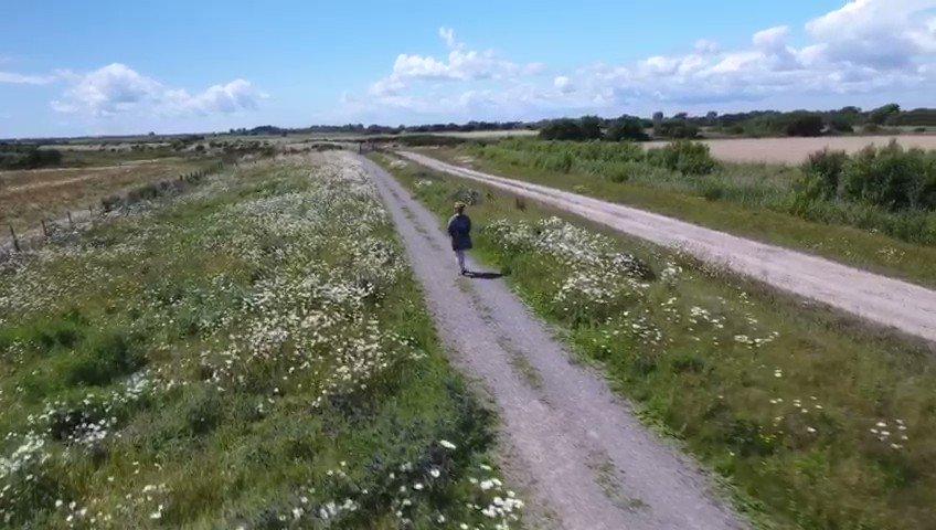Image for the Tweet beginning: The stunning #wetlands #cycletracks #footpaths