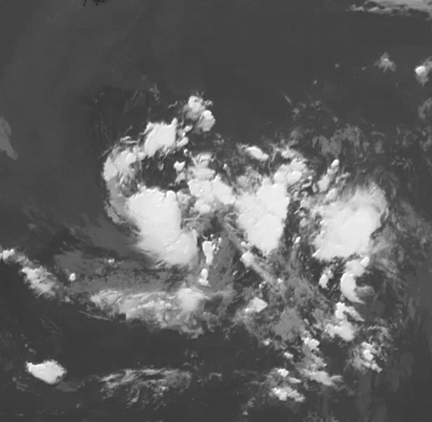 Image for the Tweet beginning: This weather is getting organized,