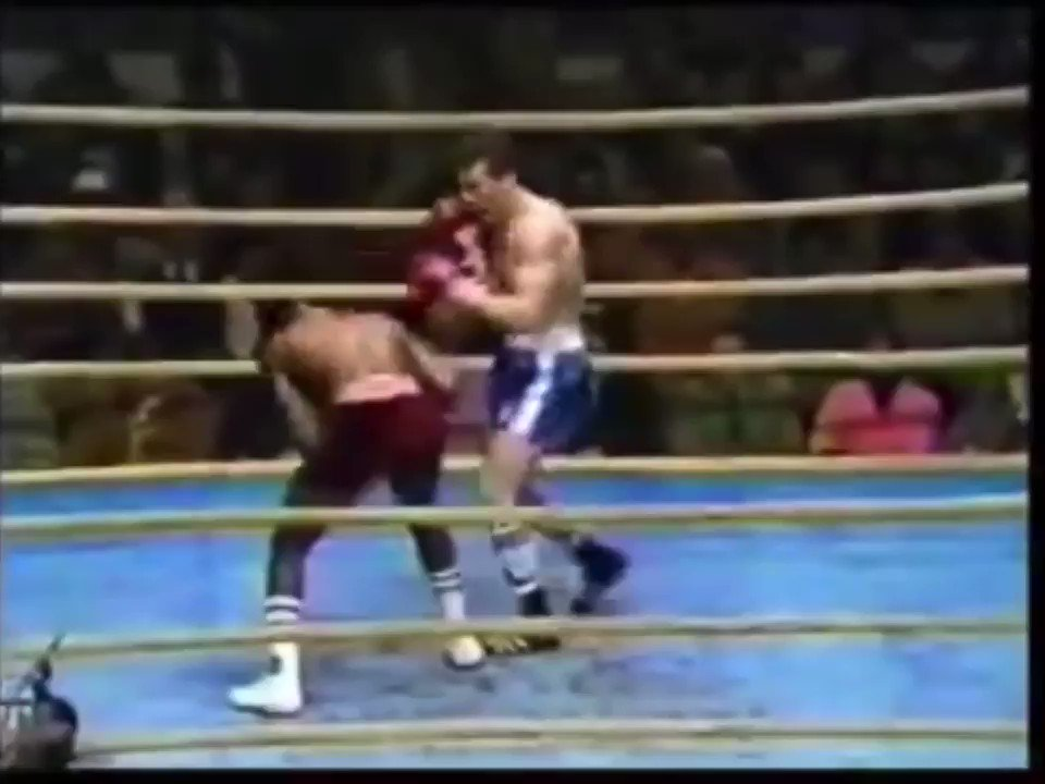 Marvin Hagler knocks Loucif Hamani through the ropes💥🥊  Haglers motto was 'Destruction and Destroy' and he certainly lived up to that   Name three fighters past or present that would live up to Haglers motto https://t.co/FkE2vq8H6v