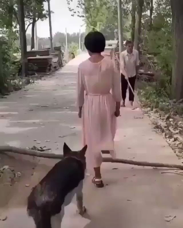 OMG...presence of mind, recall and empathy!  RT@Ghost_who_walkHumanity: Watch and learn... 💕🍃 https://t.co/78BQIPeKbz