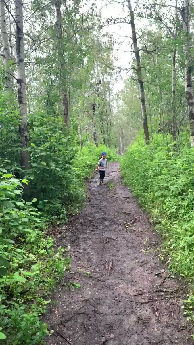 We went for a short hike at Elk Island. It was great to get out but damn, it was grand central station for mosquitoes. I'm pretty sure by toddler scared more than animals away! He thought he saw a T-Rex 🦖 #ElkIslandNationalPark #gotouttoday https://t.co/hrd0RR3xqW