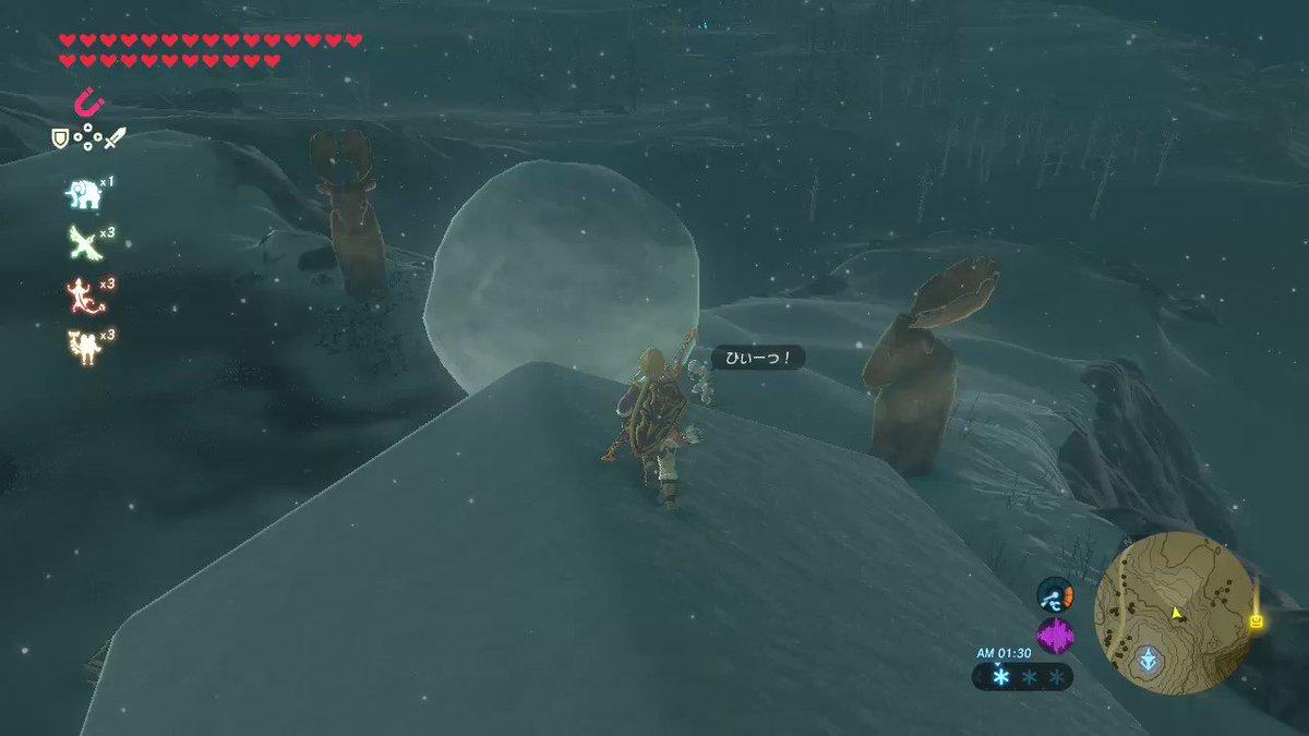 Image for the Tweet beginning: 殺人兵器と化した   #ゼルダの伝説 #BreathoftheWild #NintendoSwitch