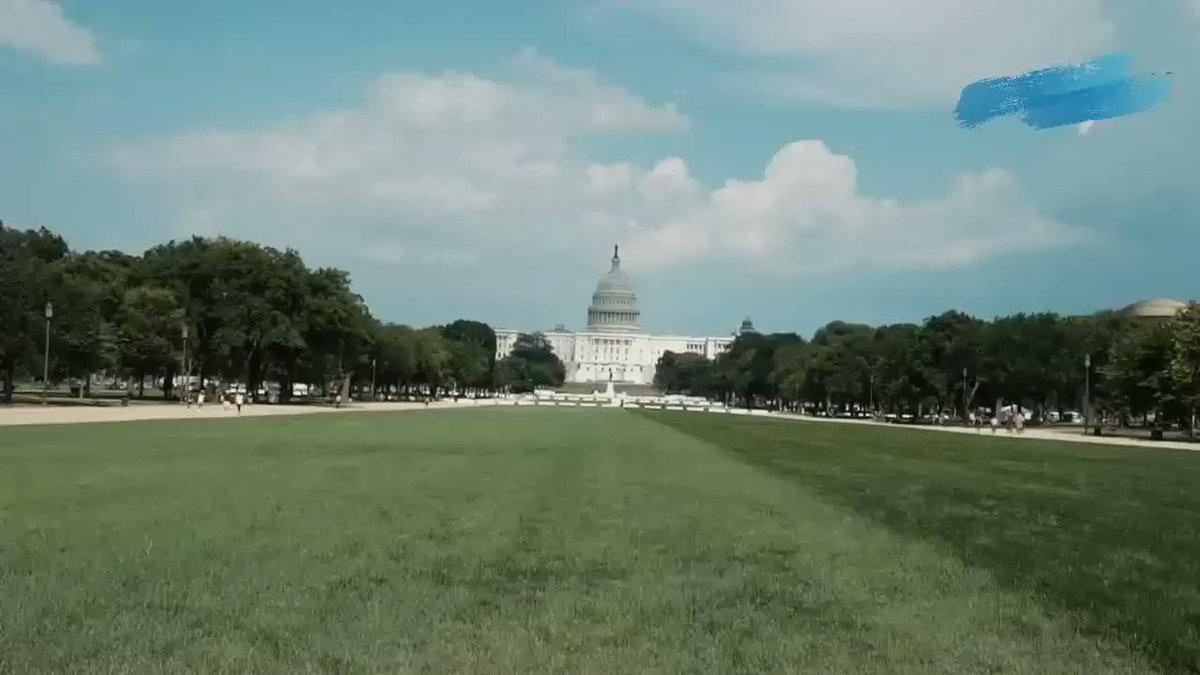 Protestas antirracistas, banderas incendiadas frente a la Casa Blanca, grupos de ultraderecha, tensiones entre manifestantes y seguidores de Trump y claro, mucha policía entre fuegos artificiales. Les hice este resumen de ese otro 4 de julio en Washington DC. #July4th