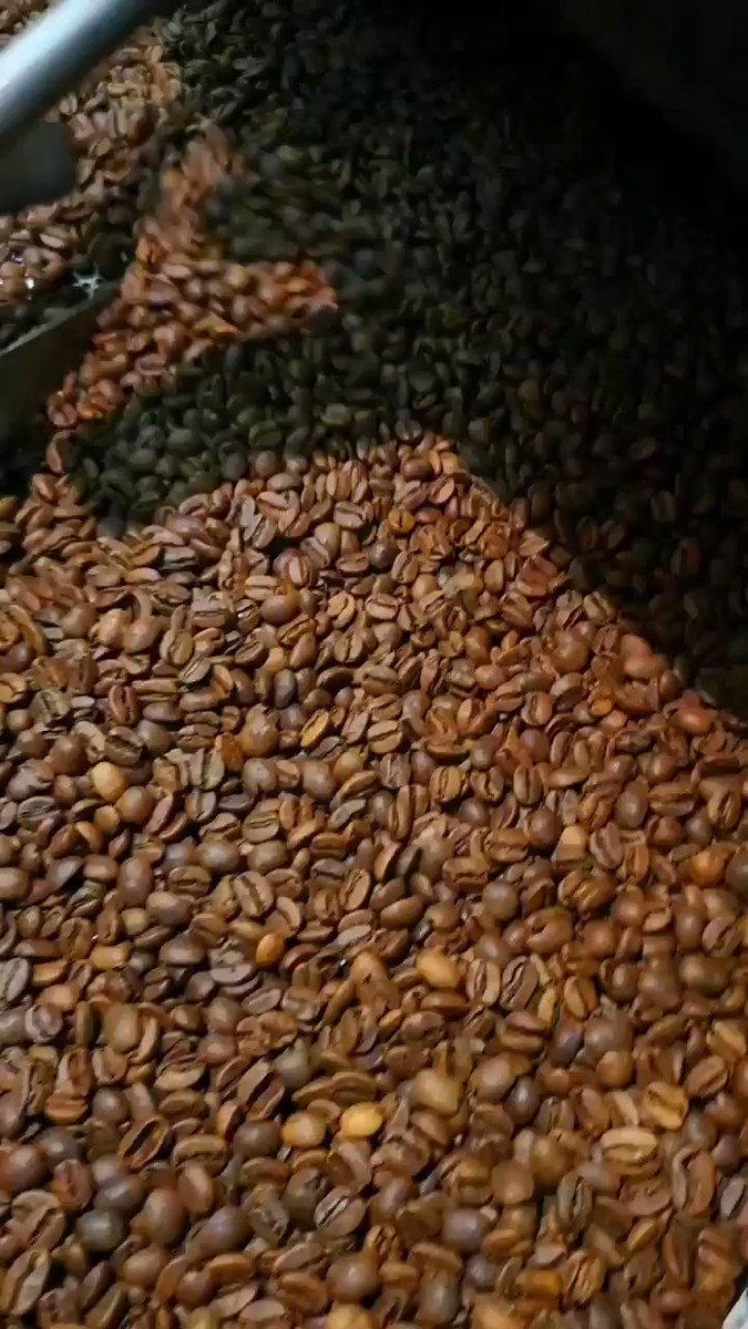 #roast #coffee. High #quality #coffee speaks for it self. #powercoffee #realpeople ______________________________ #webgasse39  ______________________________ #coffee #kaffee #coffeelover #coffeetime #coffeeadict #coffeevibes #coffeeroasters #wien #viennapic.twitter.com/5sPRtGsWf7
