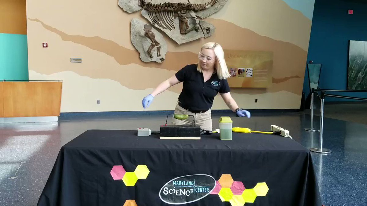 Ever seen a pickle lightbulb before? Well Brooke's here to show you! #MSCExplains #LetsScience