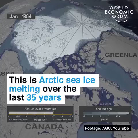 Arctic sea ice melting over the last 35 years. Were in a #ClimateEmergency. Time to stop the delays and #ActOnClimate #ClimateCrisis #ClimateCrisis #Solar #Wind #Renewables #Go100re