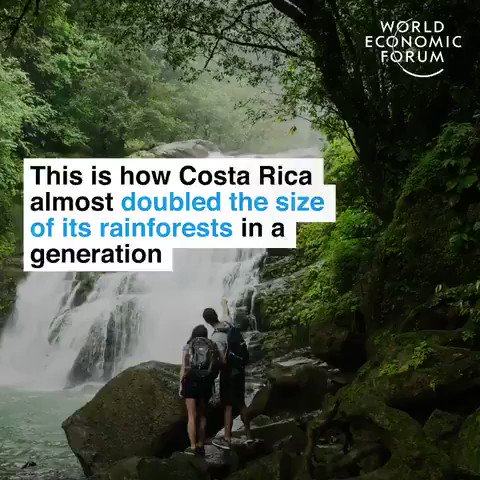 This is how this Central American country managed to double the size of its rainforest in a generation. Creating jobs and supporting local communities in the process. We have the solutions, lets implement them. #ActOnClimate #climate #energy #GreenNewDeal #go100re