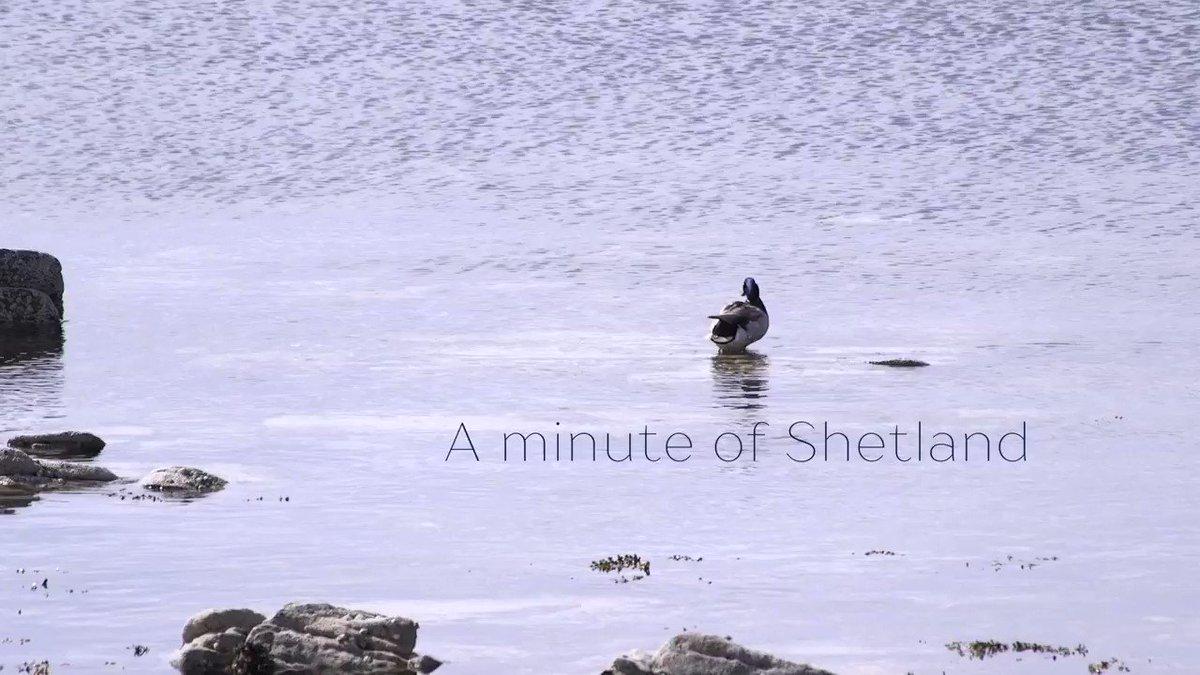 Turn the volume and enjoy a minute in #Shetland... #sundayvibes #InspiredByShetland