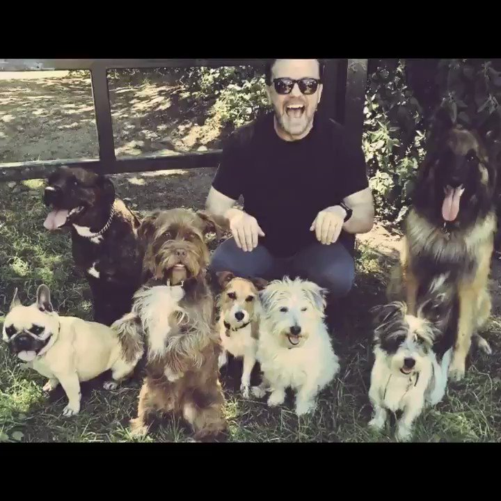 If the kindest souls were rewarded with the longest lives, dogs would outlive us all.~ @RickyGervais.💟 When you buy anything from the Protect All Wildlife online store at protect-all-wildlife.ecwid.com you are helping @MiriMission rescue and treat sick, injured & disabled animals.