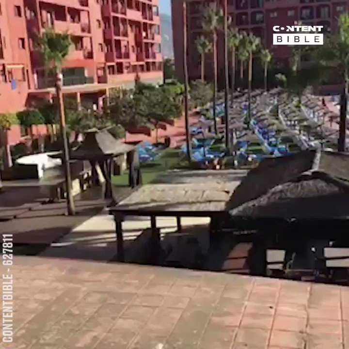 The Daily Sun Lounger Race...🤣😤  To use this video, Please contact licencing@ladbiblegroup.com #ladbiblexclusive #licensedbyladbible #contentbible #holiday #allinclusive #sunlounger #race #hotelpool #tourists #uk #fail #meme #brits #sad