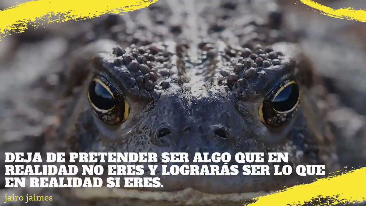 Simplemente frases.  #SerUnoMismo #frasesdereflexion #frases