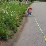 柴犬による『チャイルド・プレイ』のチャッキーコスプレ!怖くない!