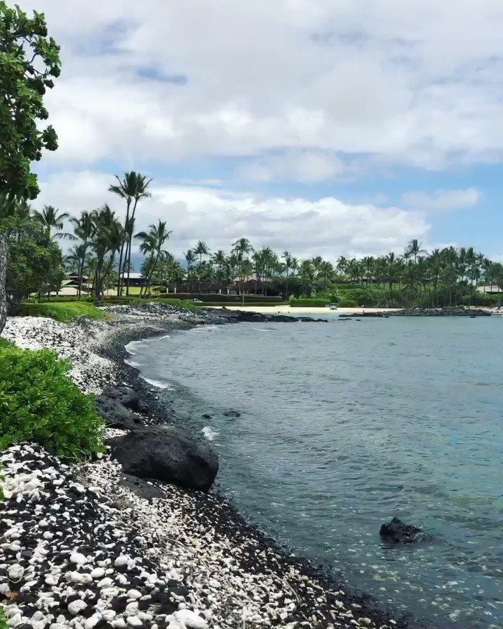 Sending you #sunshine on this #AlohaFriday! https://t.co/q2AZHD1RSq